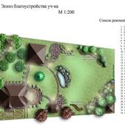 Ландшафтное проектирование в Алматы, выполнение работ по благоустройству и озеленение фото