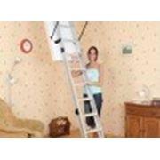 Чердачные лестницы NO LUX фото