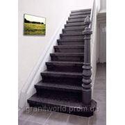 Лестницы из гранита (Образец 610) фото