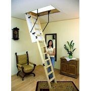 Чердачная лестница «OMAN» модель «Termo» фото