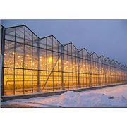 Установка теплиц монтаж промышленных тепличных комплексов. фото