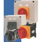 Переключатели кулачковые SK63, SK100 на токи 63-100 А. Переключатели в корпусах IP65. Спамел. фото