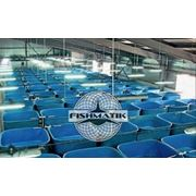 Разведение рыбы.Установки замкнутого водоснабжения (УЗВ - RAS) фото