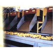 Услуга переработки зерновых фото