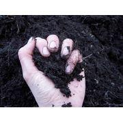 Чернозем торф грунт растительныйпесок торф фото