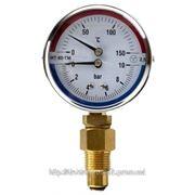 Термоманометры радиальные МТ-80-ТМ-Р фото