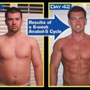 Анабол 5 (не стероидный) от Nutrex фото