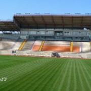 Проектирование футбольных полей и стадионов фото