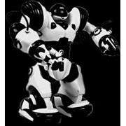 Робот Robosapien 8081 фото