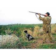 Страхование ответственности владельцев оружия фото