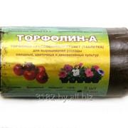 Таблетка торфяная Торфалин-А (5 шт) 0,8л. фото