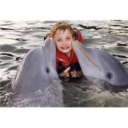 Плавание с дельфинами. У нас всегда +22С фото