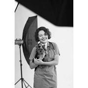 Фотосессия с собакой, фотосессия с домашними животными, фотосессия с котом, фотосъемка с животными фото