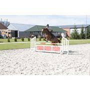Показательные выступления выездка конкур обучение лошадей дрессура лошадей игры активного отдыха клуб казацкие игры фото