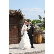 Свадебные торжества  выездное бракосочетание фотосесия банкет торжество Днепропетровск фото