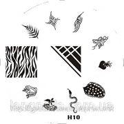Диски для стемпинга серии H № 10,12,13,14,15 фото