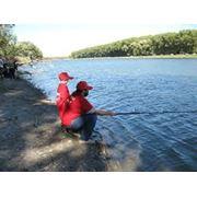 Водоем для платной рыбалки Киев фото
