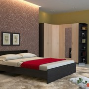 Спальный гарнитур Паулина К1 фото