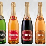 Шампанское ТМ Одесса - дизайн логотипа, дизайн этикетки фото