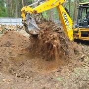 Спиливание и выкорчевывание деревьев и кустов фото