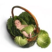 Страхование беременности и родов фото