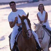 конный туризм фото