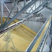 Хранение зерна, Элеватор в Северо-Казахстанской Области фото