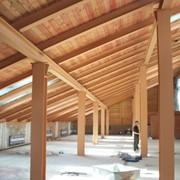 Обработка огнебиозащитная деревянных конструкций фото