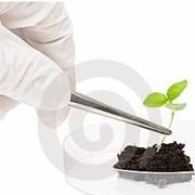 Биотехнологические исследования почвы фото