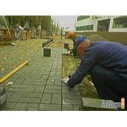 Укладка тротуарной плитки Киев и Киевской области фото
