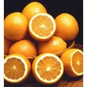 Апельсины продажа Киев Украина фото