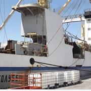 Услуги по лову рыбы и морепродуктов фото