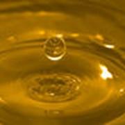 Масло подсолнечное фото