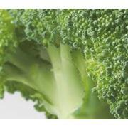 Семена капусты брокколи фото