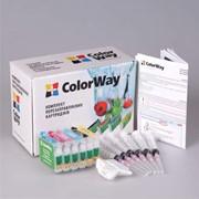 Перезаправляемые картриджи ПЗК Epson T50 ColorWay