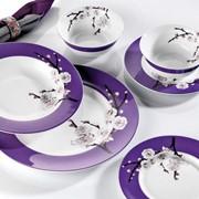 Костяной фарфор Фарфоровый набор тарелок Турция фото