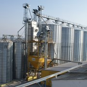 Зернохранилища из металлических вентилируемых силосов фото