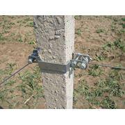 Хомут для крепления (натяжения) шпалерной проволоки и анкерного троса к крайнему столбу. фото