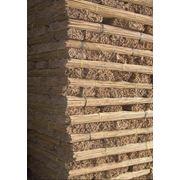 Приштамбовый колышек бамбуковый фото