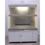 Шкаф с вытяжным устройством ЛАБ2.859.006 фото