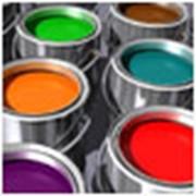 Поставка лакокрасочной продукции фото
