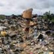 Проект лимитов отходов фото