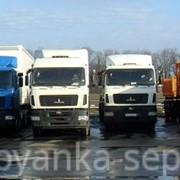 Посуточное хранение грузовых автомобилей (длинной до 8 метров) фото