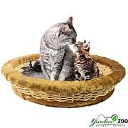 Лежанка для животных ЛОЗА овальная средняя фото
