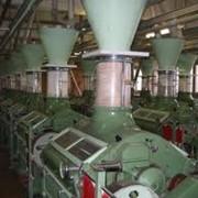 Оборудование мельничное, мукомольное фото