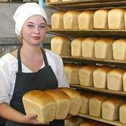 Выпечка хлеба Хлеба фото
