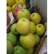 Яблоки Джонегред фото