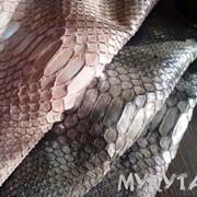 Кожа питона «под текстиль» с блеском фото
