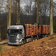 Услуги лесовозов Scania +375(29) 665-49-72 фото