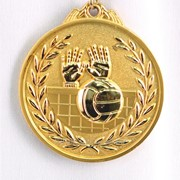 Медаль рельефная волейбол - золото фото
